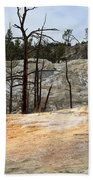 Angel Terrace At Mammoth Hot Springs Yellowstone National Park Hand Towel