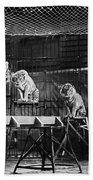 Animal Tamer, 1930s Bath Towel