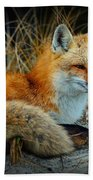 Animal - The Alert Fox  Bath Towel