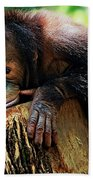 Animals 3 Bath Towel