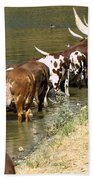 Ankole-watusi Cattle Bath Towel