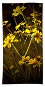 Anza Borrego Desert Sunflower 4 Bath Towel