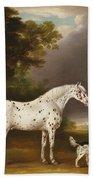 Appaloosa Horse And Spaniel Bath Towel