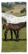 Appaloosa Mare And Foal Bath Towel