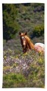 Appaloosa Mustang Horse Bath Towel