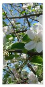 Apple Blossoms Art Prints 60 Spring Apple Tree Blossoms Blue Sky Landscape Bath Towel