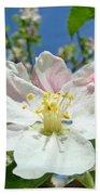 Apple Tree Blossom Art Prints Springtime Nature Baslee Troutman Bath Towel
