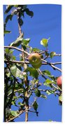 Apple Tree With Apples And Flowers. Amazing Nature Bath Towel