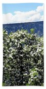 Apple Trees In Bloom     Bath Towel