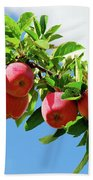 Apples On A Branch Bath Towel