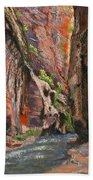 Apricot Canyon 2 Hand Towel