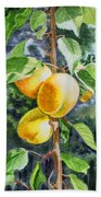 Apricots In The Garden Bath Towel