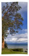Arbutus Tree At Rathtrevor Beach British Columbia Bath Towel