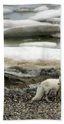 Arctic Fox By Frozen Ocean Bath Towel