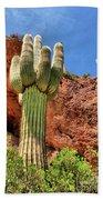Arizona Saguaro #1 Bath Towel