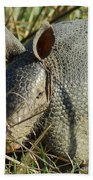 Armadillo By Morning Hand Towel