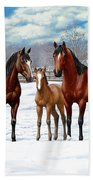 Bay Horses In Winter Pasture Bath Towel