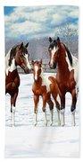 Bay Paint Horses In Winter Bath Sheet