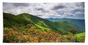 Asheville Nc Blue Ridge Parkway Spring Flowers North Carolina Bath Towel