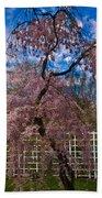 Asian Cherry In Blossom Bath Towel