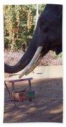 Asian Elephant Painting Picture Bath Towel