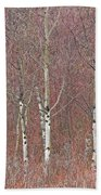 Aspen And Buckbrush Bath Towel