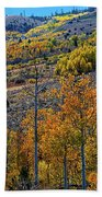 Aspen Cascades In The Sierra Bath Towel