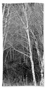 Aspen Forest Black And White Print Bath Towel