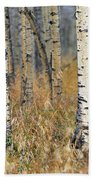 Aspen Forest, Mountain View County Bath Towel