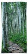 Aspen Trails  Bath Towel