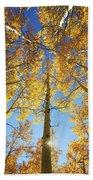 Aspen Tree Canopy 2 Bath Towel
