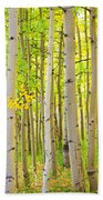 Aspen Tree Forest Autumn Time Portrait Bath Towel