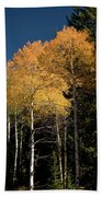 Aspens And Sky Bath Towel