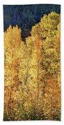 Aspens In Autumn IIi Bath Towel by Leda Robertson