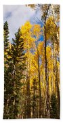 Aspens In Santa Fe 3 Bath Towel