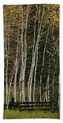 Aspens In The Fall Bath Towel