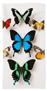 Assorted Butterflies Bath Towel