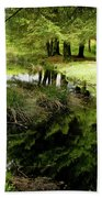 At The Edge Of The Forest Pond. Bath Towel