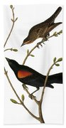 Audubon: Blackbird Bath Towel