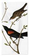 Audubon: Blackbird Bath Towel