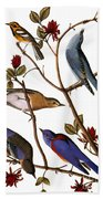 Audubon: Bluebirds Bath Towel