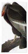 Audubon: Condor Bath Towel