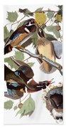 Audubon: Duck Bath Towel