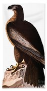 Audubon: Eagle Bath Towel