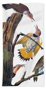 Audubon: Flicker Bath Towel