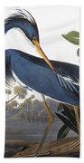 Audubon Heron, 1827 Bath Towel
