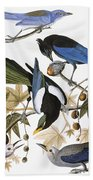 Audubon: Jay And Magpie Bath Towel