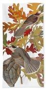 Audubon: Jay Bath Towel