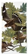 Audubon: Nighthawk Bath Towel