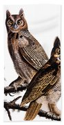 Audubon: Owl, (1827-1838) Bath Towel